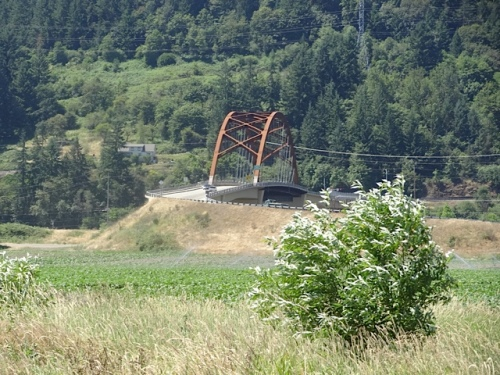 As we continued our walk, we could see the Sauvie Island bridge. (This is slightly telephoto)