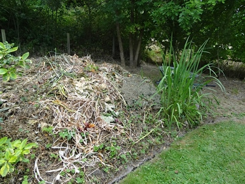 the compost/debris heap at the very back corner