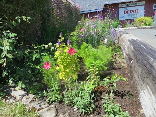 the newest area of the Depot garden
