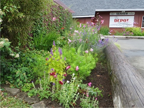 watering and weeding the Depot garden