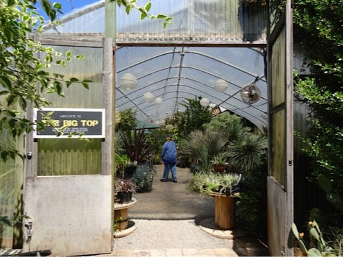 entering the main greenhouse