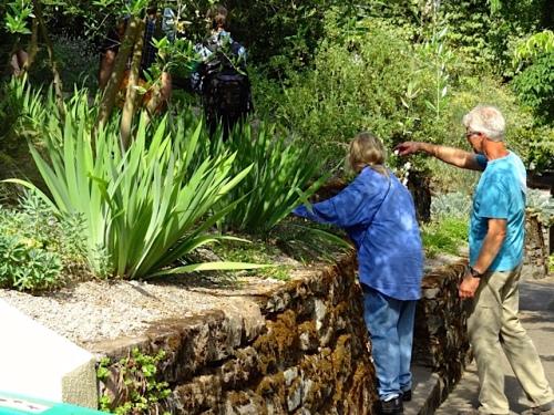 plant inspectors (Allan's photo)