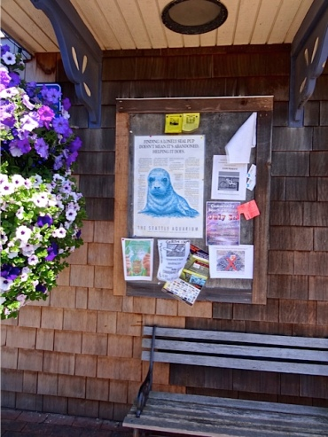 police station bulletin board and Basket Case basket (Allan's photo)