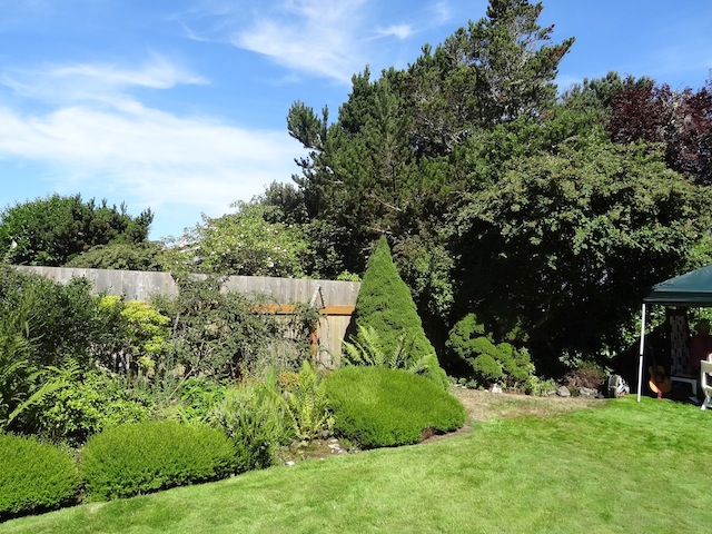 Beside the conical tree, one enters the second (west) garden area.