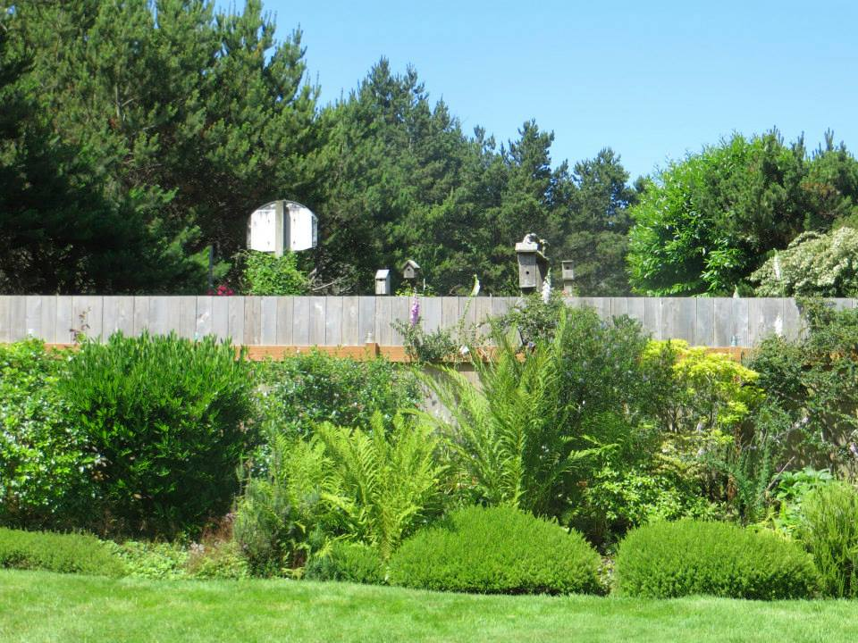 pre-tour visit, July 3, 2015; a second garden area is on the other (west) side of this fence.