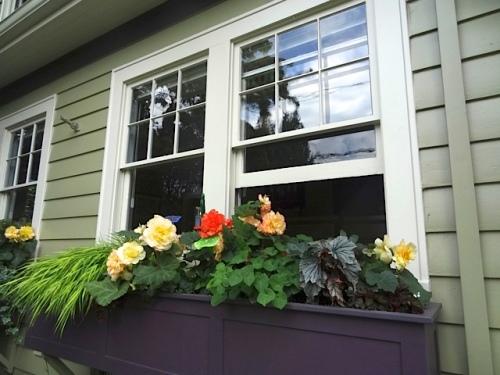 front garden windowbox