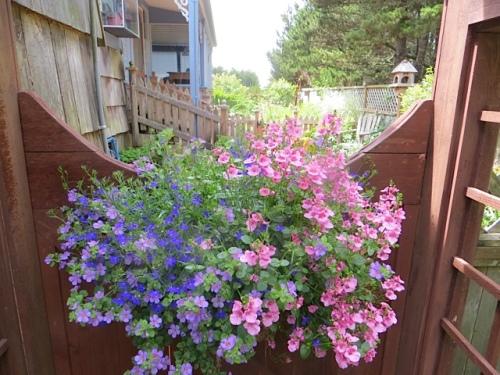 gate to west garden