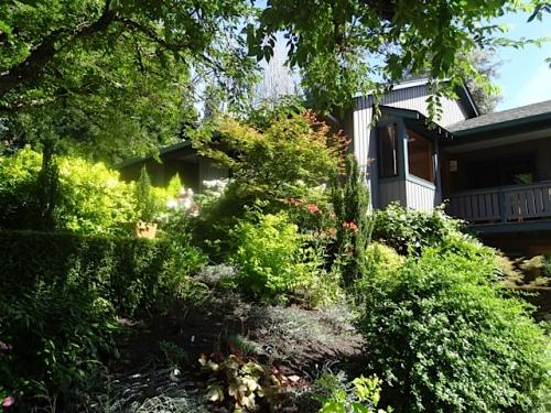 the sloping garden