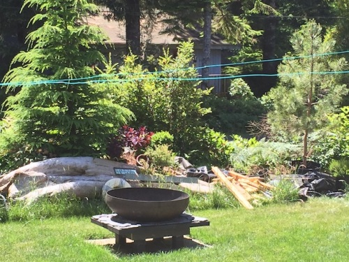 the firepit garden on June 18th