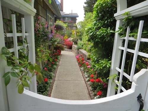 entering Jo's garden