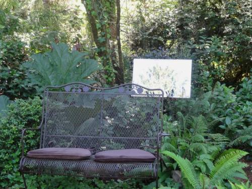 bench and garden mirror that reflects leaves and sky