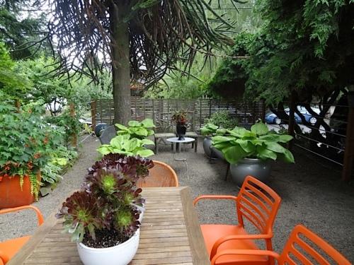 the front garden patio