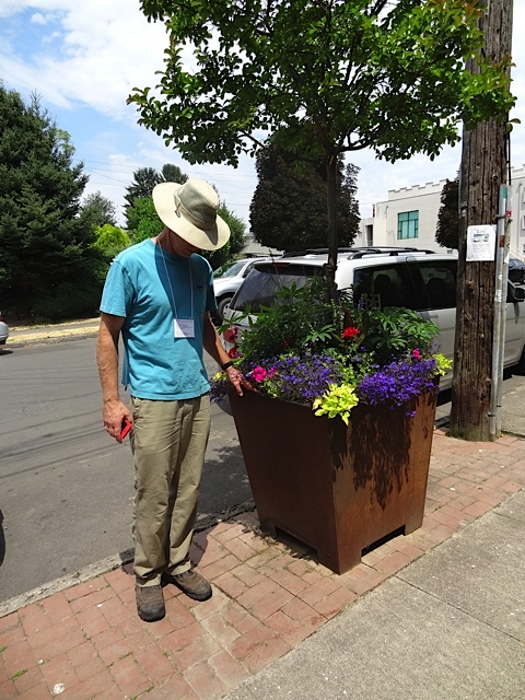 Todd admiring the curbside planter.