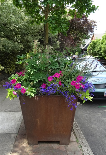 wish Ilwaco had planters like this.