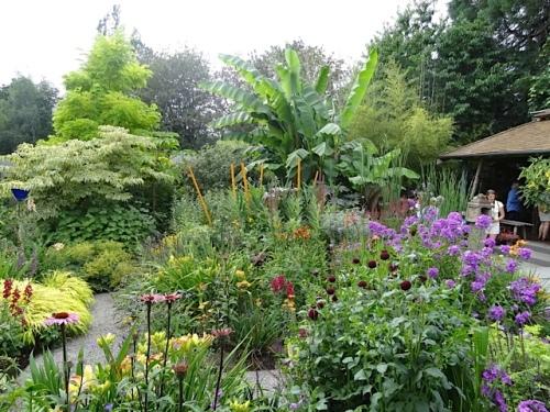more garden gazing