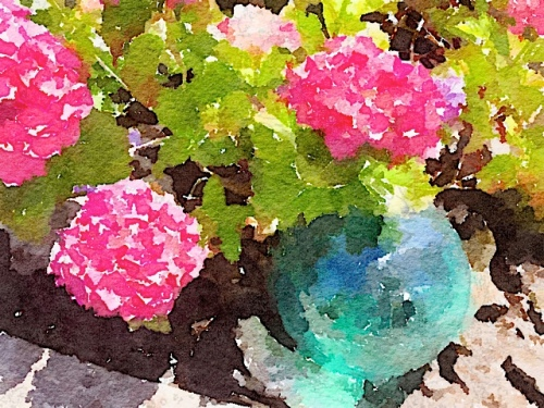and a waterlogue of the hydrangea