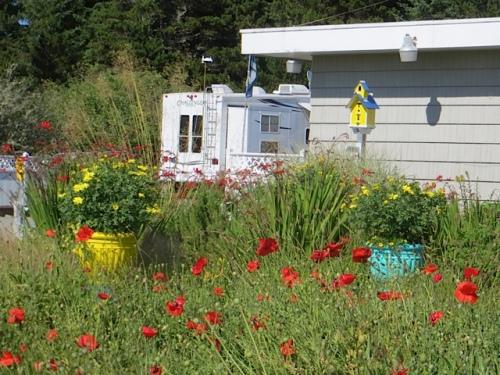 west garden telephoto