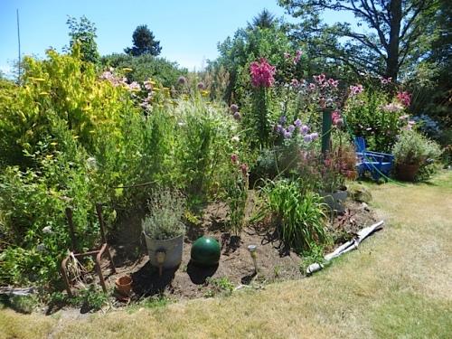 back garden, east side, room for more plants