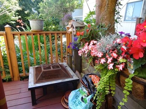 SE corner of back porch