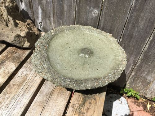 another bird bath with a resting place for bees