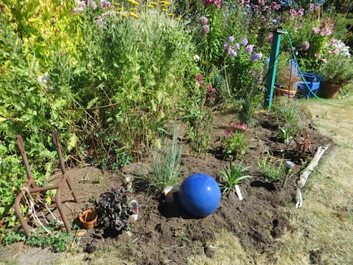 after, with a colour switch on the pottery balls, to tone with some new Agapanthus.
