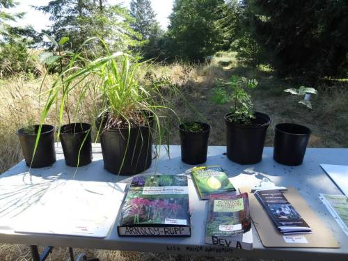 books about native plants