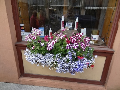 a sweet windowbox at a restaurant