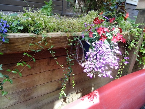 retaining wall flowers