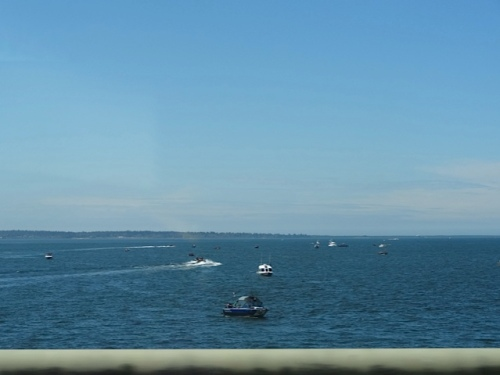 From the 4 mile long bridge: lots of little fishing boats on the Columbia