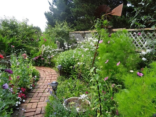 I forgot to take a close up; you can see on the very right that one of the cosmos plants is pale yellow!