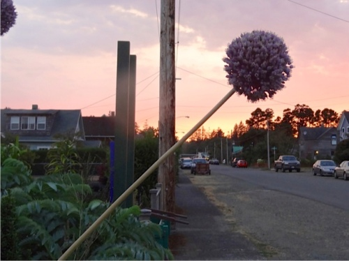 (Allan's photo): home at dusk after a long day