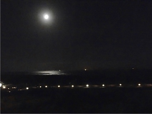 from the Worldmark: the moon, boats, and the lights along the boardwalk