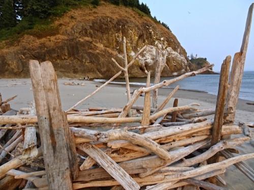 driftwood forts