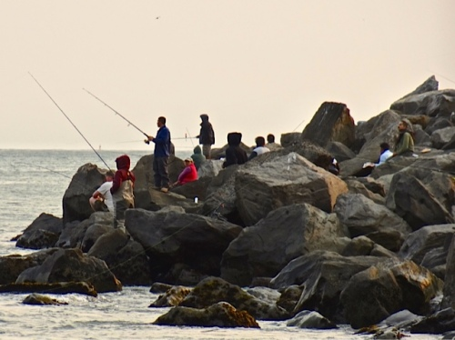 fishing off the jetty