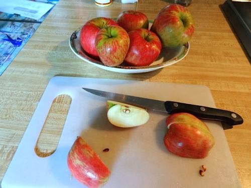 Cripp's Pink (Pink Lady) apples that had blown off our tree. (Allan's photo)