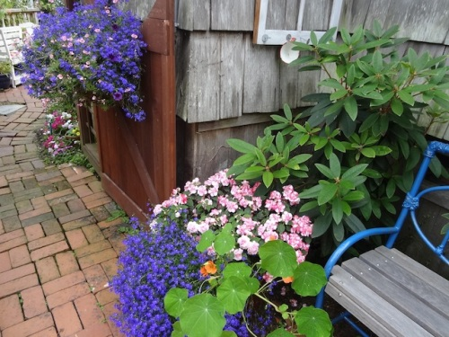 looking east from the center courtyard, with flowers from The Basket Case Greenhouse