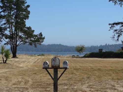 across the road: Willapa Bay