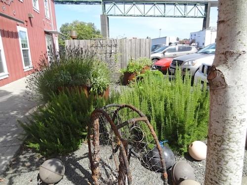 the restaurant's herb garden