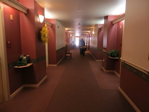 just one third of the length of hallways that we traverse to the garden