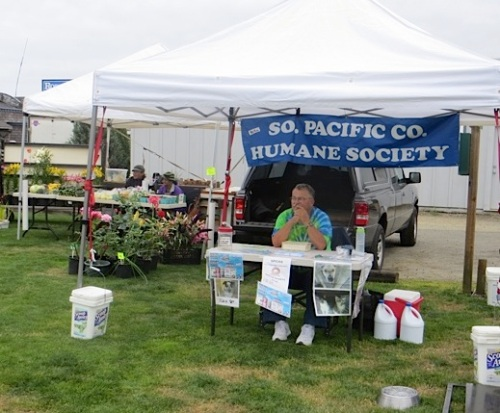 the Humane Society raffle booth...with kitty litter buckets holding down the tent in the ubiquitous wind