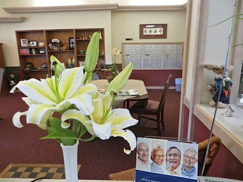 lilies in a bouquet in the common room