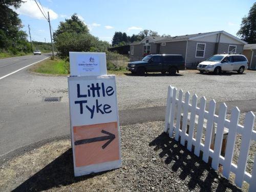 Little Tyke