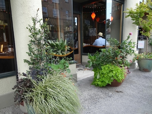 on our way to the park, some of Astoria's excellent planters.