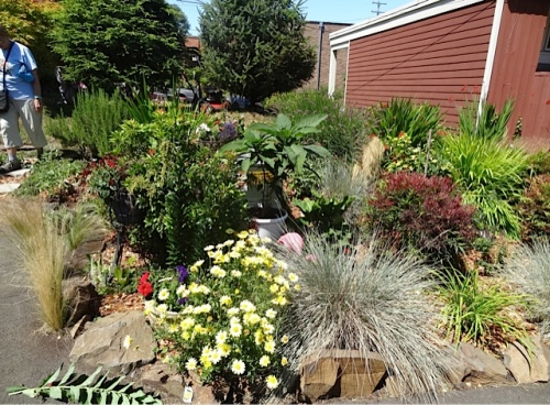 apartment building garden and Bohnkes intermingle
