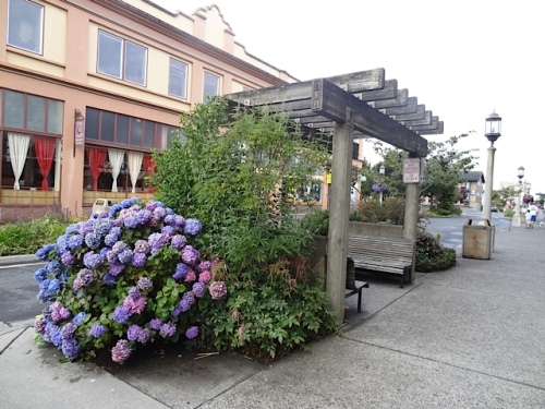 I love the arbor benches.