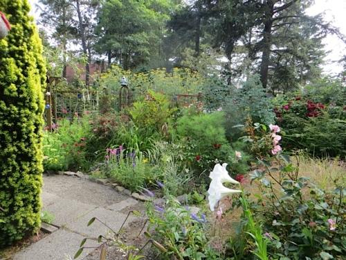 SW corner of the garden