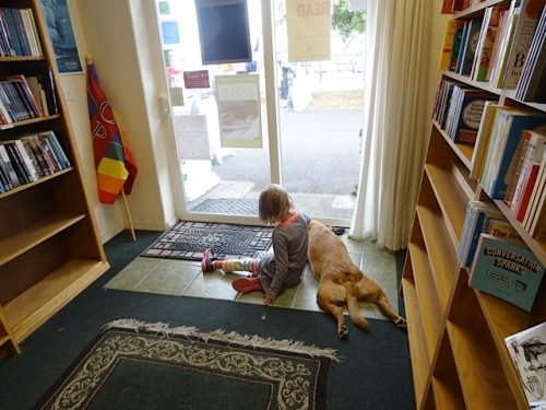 shop dog Scout and a friend