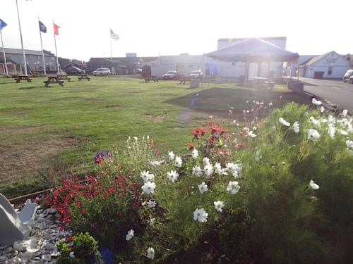Veterans Field