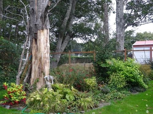 the former danger tree garden