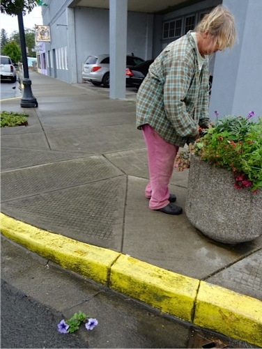 Allan's photo: It's tough to get windblown planters to look good again.